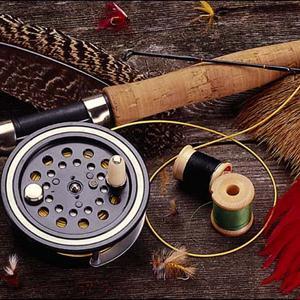 Охотничьи и рыболовные магазины Правдинского