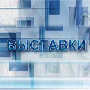 Выставки Правдинского